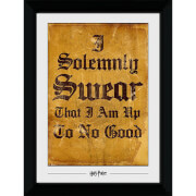 Harry Potter I Solemnly Swear Collector's 50 x 70cm Framed Photograph