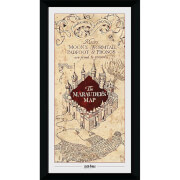 Harry Potter Marauders Map Collector's 50 x 100cm Framed Photograph