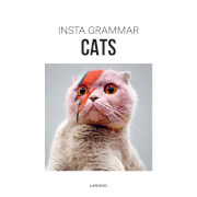Insta Grammar: Cats (Paperback)