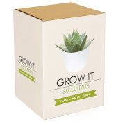 Grow It: Succulent