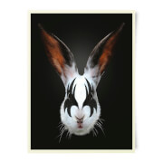 Robert Farkas Kiss Of A Rabbit Art Print