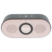 AV: Link Portable 4.2 Bluetooth Speaker - Rose Gold