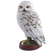 Harry Potter Hedwig 9.5