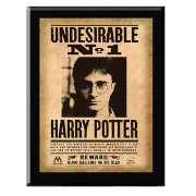 Harry Potter Harry Potter Undesirable No. 1 Plaque