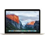 Apple 12