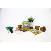 Sow & Grow Sensitive Sloth Plants