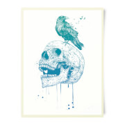Skull And Crow Art Print