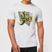 Camiseta Disney Toy Story Fiesta Saurus Rex - Hombre - Gris - 4XL - Gris