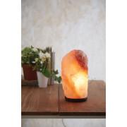 Premier Housewares Natural Salt Lamp - Large