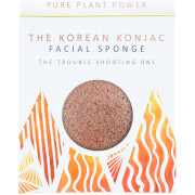 Купить Спонж для лица The Konjac Sponge Company The Elements Fire Facial Sponge — Purifying Volcanic Scoria 30 г