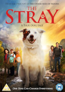 Click to view product details and reviews for The Stray.