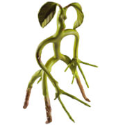 Fantastic Beasts Bendable Bowtruckle