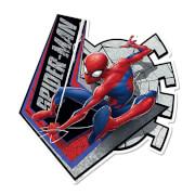 Spider-Man Webbed Wonder Wall Mounted Cardboard Cut Out