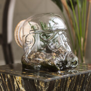 Terrarium Original Stormtrooper Star Wars