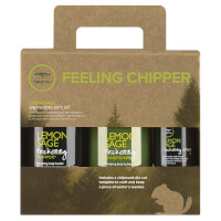 Paul Mitchell Feeling Chipper Green Tea Tree Lemon Sage Gift Set