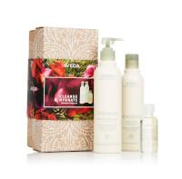 Aveda Shampure Body Gift Set