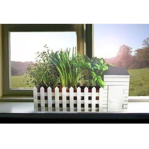 Kleingartenanlage für Drinnen inkl. Samen