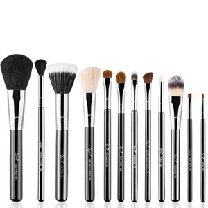 Sigma Essential Brush Kit (Worth $228)
