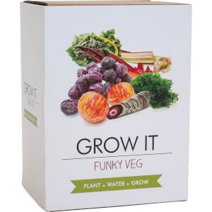 Pflanz-Set Funky Gemüse