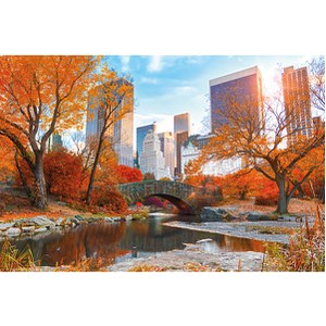 New York Central Park Autumn - Maxi Poster - 61 x 91.5cm
