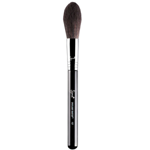 Sigma F37 Spotlight Duster Brush