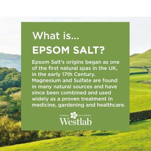 Sal de Epsom de Westlab 5 kg: Image 3