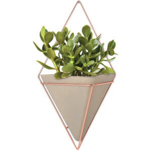 Umbra Trigg Wall Vessel - Large - Copper