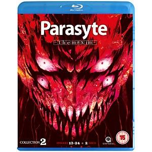 Parasyte The Maxim - Collection 2