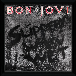 "Bon Jovi Slippery When Wet Framed Album Cover - 12"""" x 12"""
