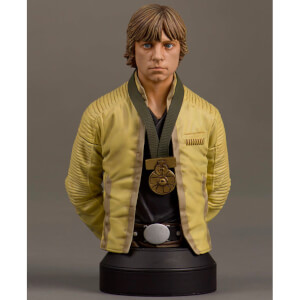 Star Wars Luke Skywalker Hero of Yavin Bust