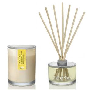 ECOYA Metro Jar Candle And Reed Diffuser Set - Lemongrass & Ginger