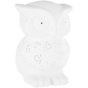 Premier Housewares Kids Owl Night Light - White
