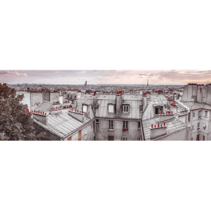 Assaf Frank Paris Roof Tops - 53 x 158cm Door Poster