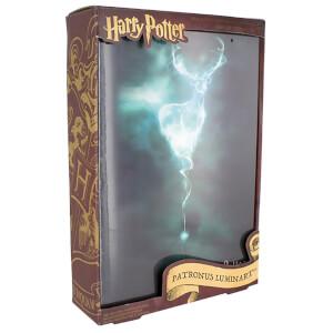 Harry Potter Luminart