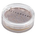 SHEER COVER Lip to Lid Highlighter Bronze