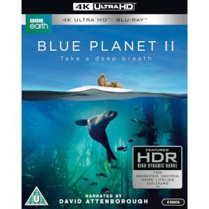 Blue Planet II - 4K Ultra HD