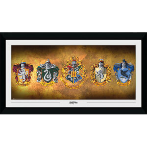 Harry Potter Houses Collector's 50 x 100cm Framed Photograph