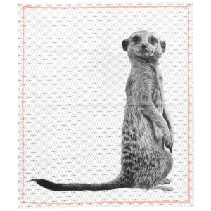 Cotton Tea Towel Raster with Neon Stitch - Meerkat