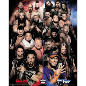 WWE Raw Vs. Smackdown Mini Poster 40 x 50cm
