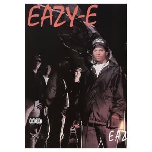 Eazy-Duz-It Vinyl