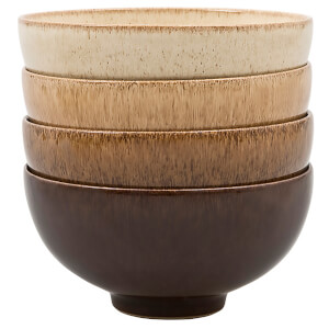 Denby Studio Craft 4 Piece Rice Bowl Set