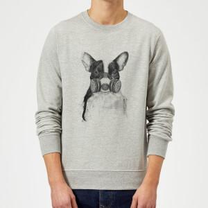 Balazs Solti Masked Bulldog Sweatshirt - Grey