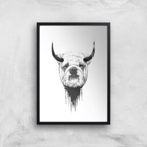 Balazs Solti English Bulldog Art Print