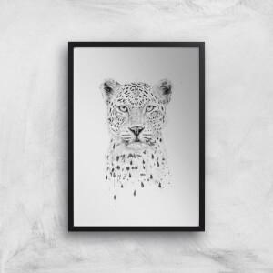 Balazs Solti Leopard Art Print
