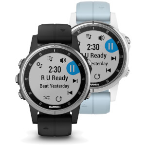Garmin Fenix 5S Plus GPS Watch