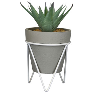 Candlelight Succulent in Pot on Metal Stand - Grey/White