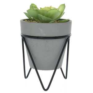 Candlelight Succulent in Pot on Metal Stand - Grey/Black