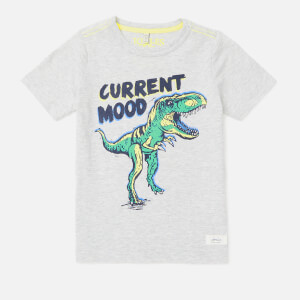 Joules Boy's Ben Printed T-Shirt - Grey Dino