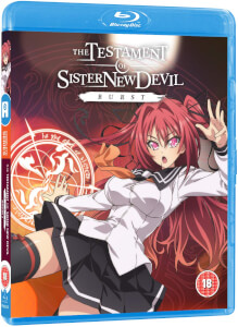 Testament of Sister New Devil Burst