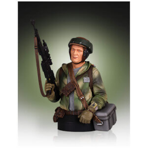 Gentle Giant Star Wars Endor Trooper 1/6 Scale Mini-bust - 18cm